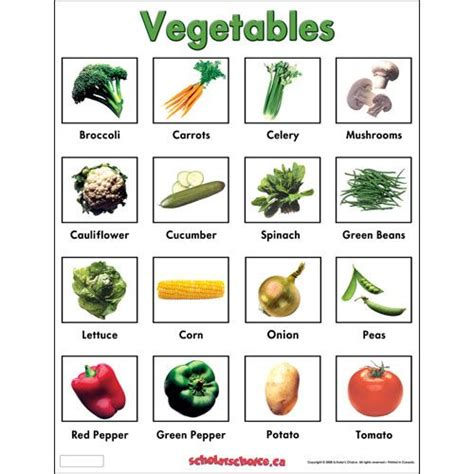 vegetables with english names vegetables chart mypyramid vegetables pinterest
