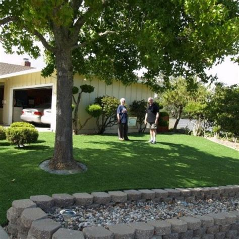 round novato ca marin county artificial grass with stepping stones