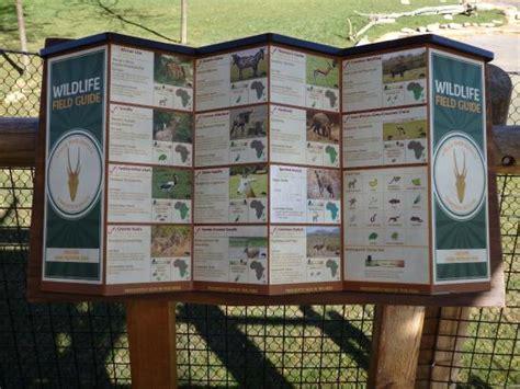 allentown tourist board info tripadvisor hyena picture of columbus zoo powell tripadvisor