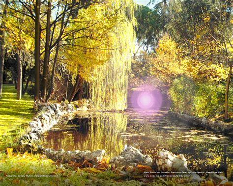 imagenes con jardines nuevas fotos de jardines fondos de paisajes