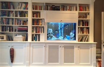 aquarium design ireland bespoke