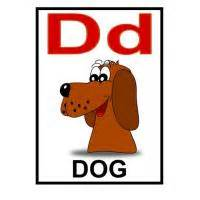 d is for dog flash card