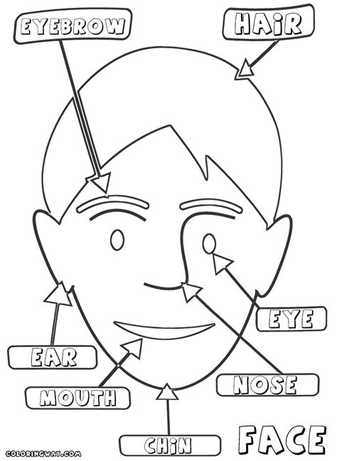 Face Coloring Pages Coloring Pages To Download And Print Parts Coloring Pages