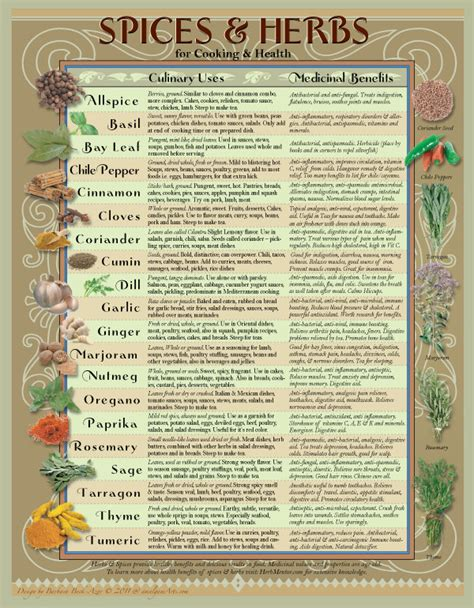 herbs chart healing herbs spices kitchen chart