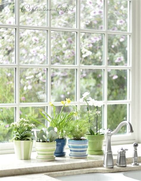 Herbs For Kitchen Window Sill 17 Best Ideas About Kitchen Window Sill On