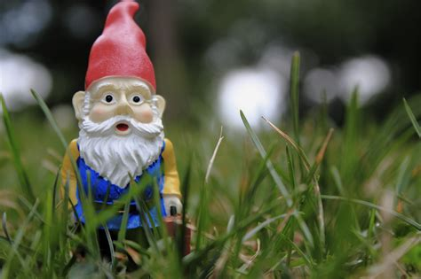 lawn gnome why i hate garden gnomes cruella de kill