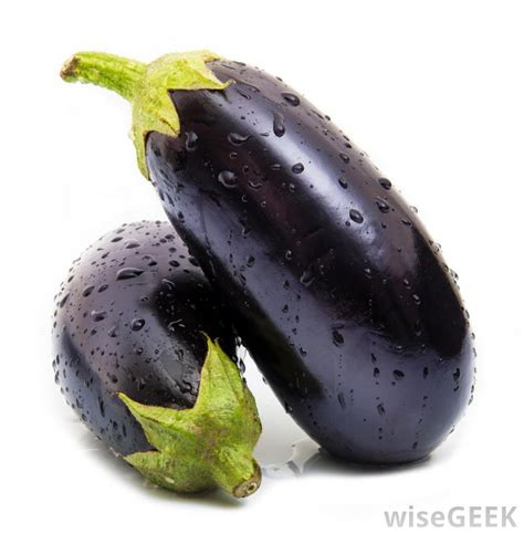 can dogs eat eggplant can i eat eggplant with pictures