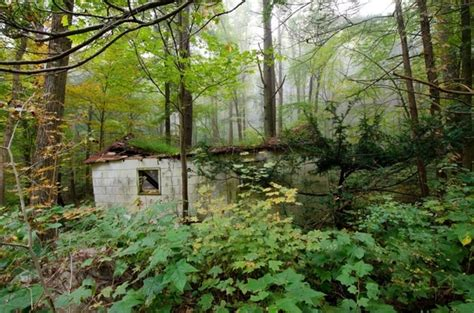 cabin in the woods eastern pa usa photorator