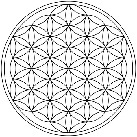flower pattern history freethought nation forums view topic flower of life