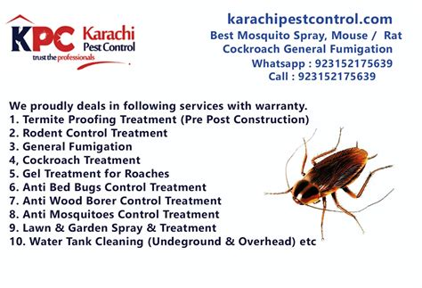 outstanding services  termite control pest rodent