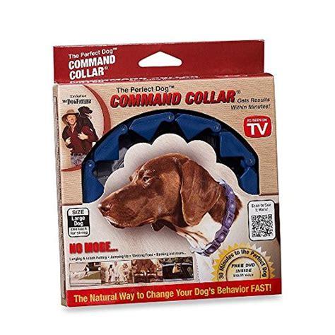 don sullivan don sullivan command collar with links and dvd restraint