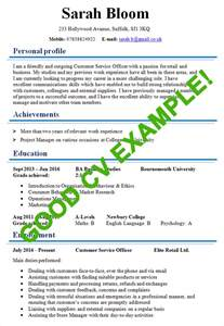 How To Write A Resume Uk by Cv 1 Page Exle