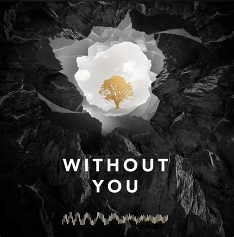 download mp3 without you avicii without you by avicii uploaded by ѕмoĸe мιrrorѕ