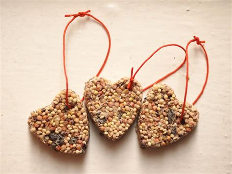 making bird seed ornaments birdcage design ideas