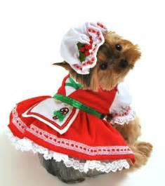 Christmas dog costumes elf costumes for dogs santa dog costumes