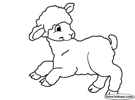 cute lamb coloring pages cute lamb coloring pages coloring pages