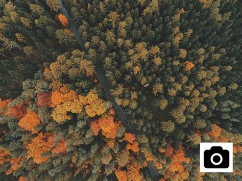 imagenes gratis creative commons el megalistado de bancos de im 225 genes gratis y sin registro
