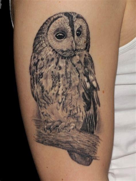 tattoos zum stichwort eule tattoo bewertung de lass