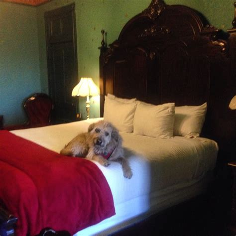 crescent hotel room 218 theodora s room travel tails