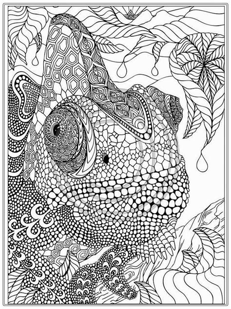 marvellous detailed coloring pages detailed coloring pages