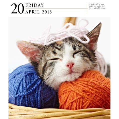 cat gallery calendar 2018 cat gallery desk calendar 2018 workman publishing calendars com assorted cats