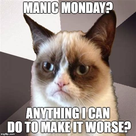 Grumpy Cat Monday Meme - musically malicious grumpy cat imgflip