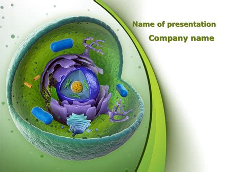 cell powerpoint template cell powerpoint templates and backgrounds for your