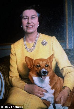 the queen s corgi queen elizabeth dogs corgi