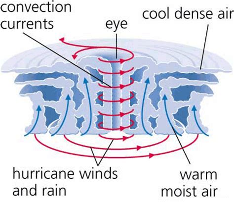 cyclone formation diagram diagram of a cyclone cyclone yasi 2011