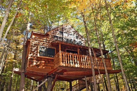 airbnb treehouse new york fall is in the air bnb at these stunning treehouses