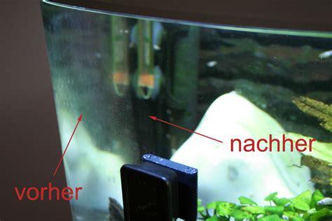 Kratzer Im Aquarium Entfernen by Aquarium Scheiben Algen Befreien Dennerle Alginator