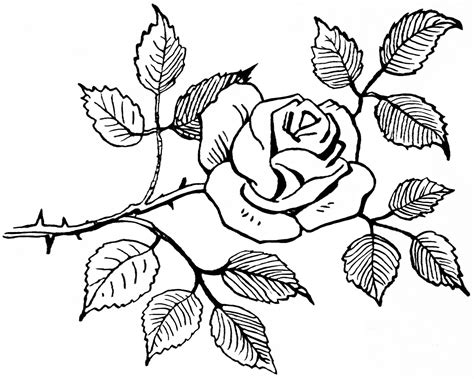 black and white flower bouquet clip art free rose pictures cliparts co
