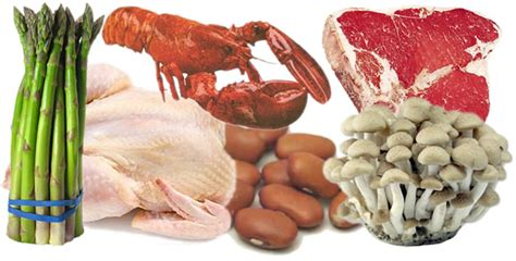 purina alimentos alimentos con alto contenido en 225 cido 250 y purinas el