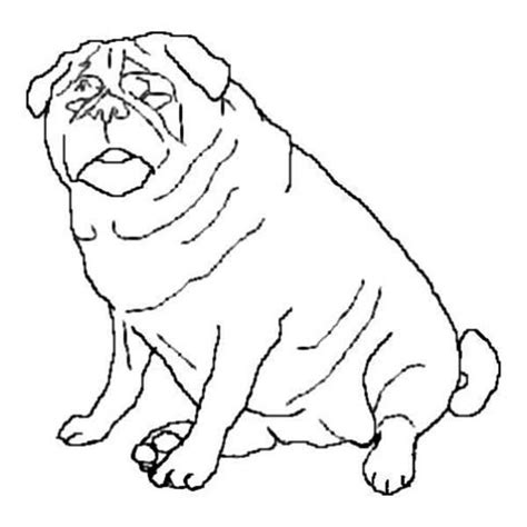 chubby puppies coloring pages chubby puppy coloring pages coloring pages