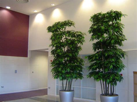 decorative trees for living room decorative artificial plants for living room living room