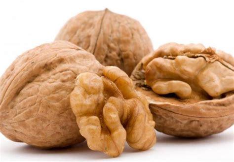 alimenti contengono vitamina b1 alimenti contengono vitamina b1 la lista completa ecoo