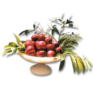 Obat Darah Tinggi Antioksidan Diet Teh Mahkota Dewa Asli herbal