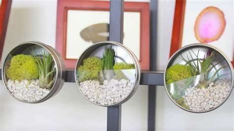 do it yourself projects video diy terrarium magnets you can make in a few minutes
