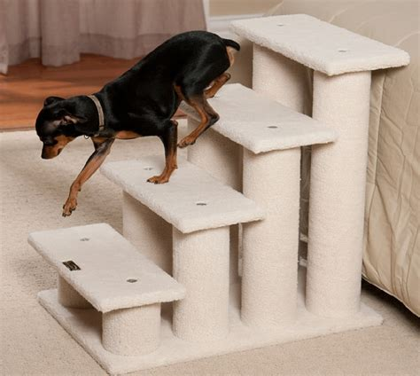 stairs for dogs how to build stairs a and useful diy project
