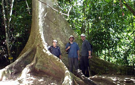 malaysia taman negara ben gillbanks