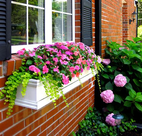 hanging window flower boxes how to hang window boxes the right way