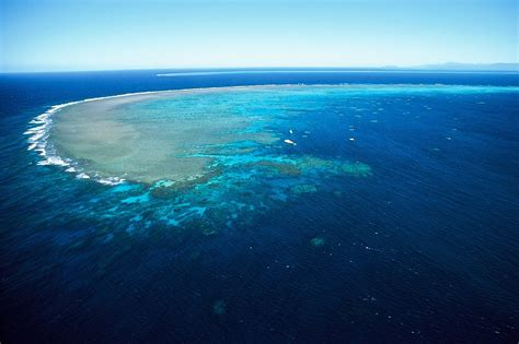 padi dive master divemaster course the great barrier reef