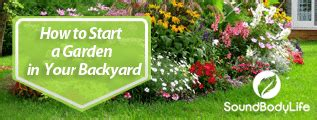 how to start a garden in your backyard how to start a garden in your backyard soundbodylife