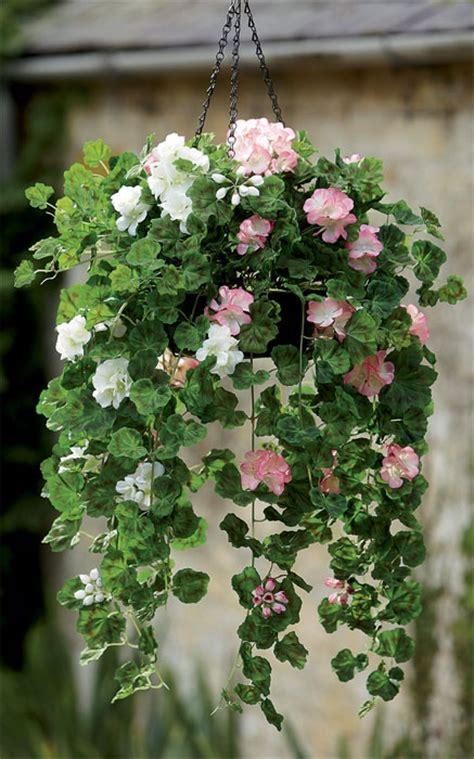 decorative garden hanging baskets 17 best ideas about hanging baskets on pinterest hanging