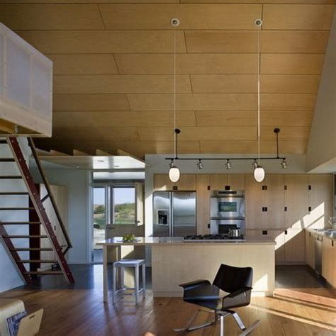Plywood Ceiling Design Ideas Pictures Remodel And Decor Plywood Ceiling Ideas