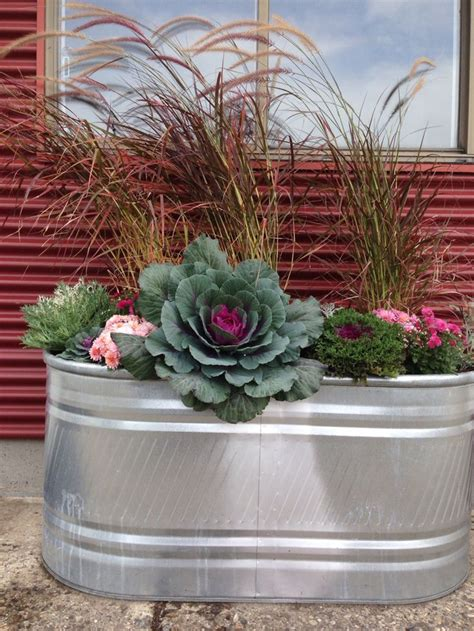 best 25 water trough ideas on
