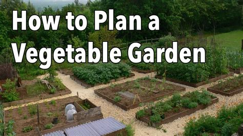 raised vegetable gardens l how to design a garden layout
