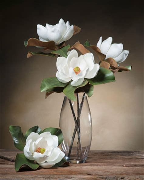 Stem Zoom 31 8 Putih bloom magnolia silk flower stems at petals