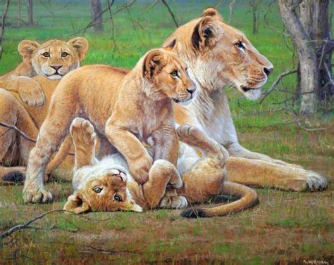 imagenes de leones bravos pintura moderna y fotograf 237 a art 237 stica animales leones