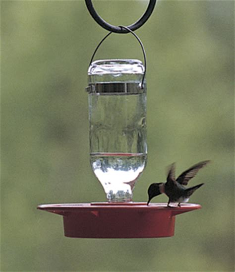 hummingbird feeders etc small 8 oz hummingbird feeder